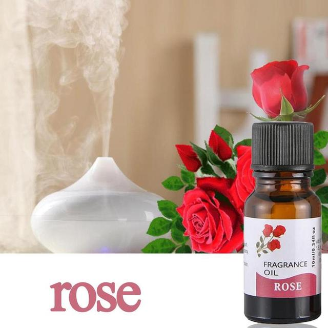 10ml Pure Natural Essential Oils Carrier Oil Aromatherapy Grade Healthy Rosemary Eucalyptus Relieve Body Fragrance Oil Diffuser 1