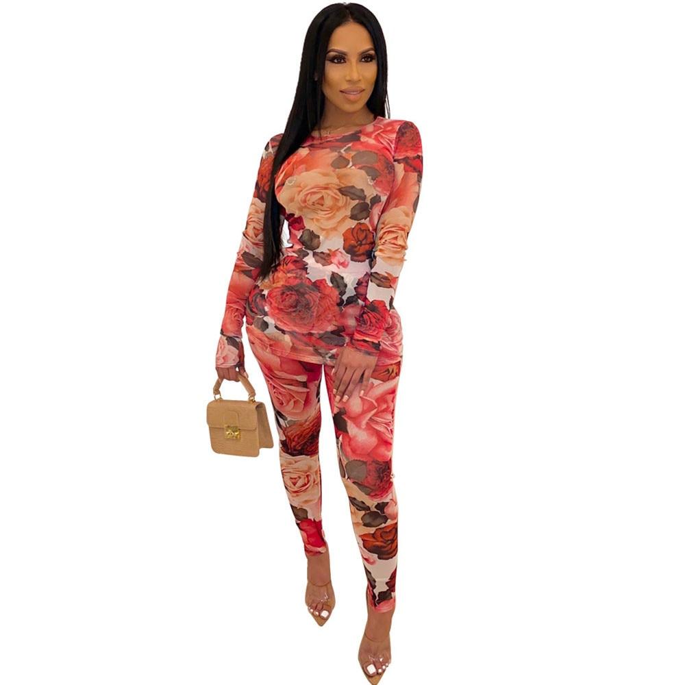 Floral impressão sheer malha 2 peça conjunto feminino queda 2019 t camisa superior e calças terno sexy festa clube conjuntos de correspondência conjuntos conjuntos