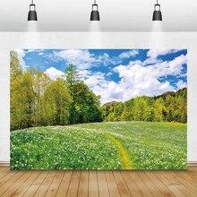 Laeacco טבעי נוף פרחי עצי שמיים ענן חדר Decro Photophone תמונה רקע תמונה רקע שיחת וידאו צילום סטודיו