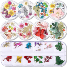 Floral-Sticker Nail-Art-Decals Dried-Flowers Beauty Mixed-Colors Natural Uv-Gel-Polish