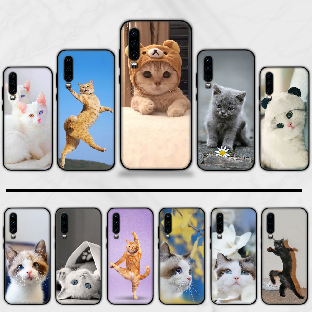 Kat Kitty Mooie Leuke Animal Pet Telefoon Case Funda Voor Huawei P9 P10 P20 P30 Lite 2016 2017 2019 Plus pro P Smart