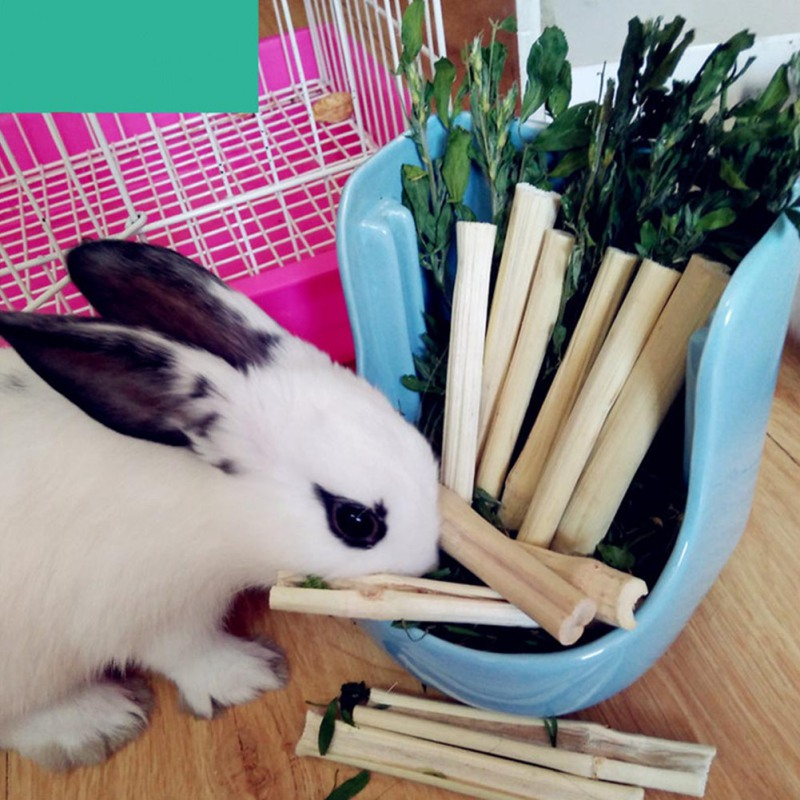 Small Pets Natural Sweet Bamboos Chew Toys Healthy Snacks For Rabbits Guinea Pigs Chinchilla Squirrel
