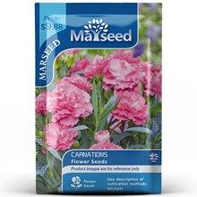American Heirloom MARSEED Carnations Flower  Seedsplants Seedling Garden Outdoor