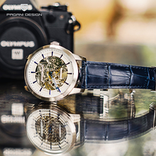 цена PAGANI DESIGN Mechanical Watches Mens Top Brand Luxury Automatic Watch Men Waterproof Skeleton Wristwatch Mens Relogio Masculino онлайн в 2017 году