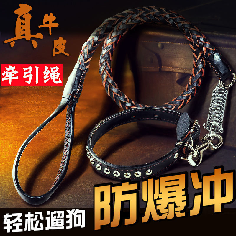 Leather Pulling Rope Dog Chain Dog Medium Large Dog Golden Retriever German Shepherd Proof Punch Neck Ring Dog Rope