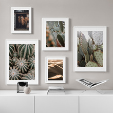 Desert Sunshine  Camel Cactus Wall Art Print Canvas Painting Nordic Posters And Prints Pictures For Living Room