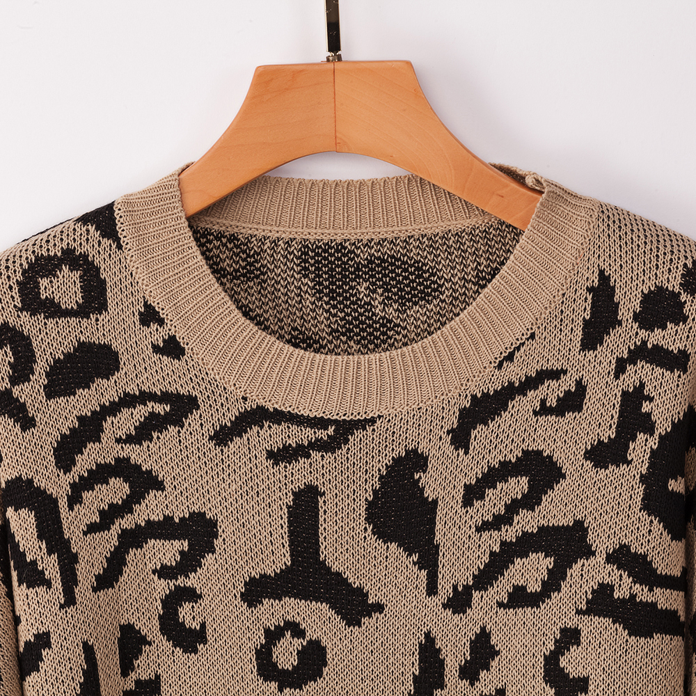 Dilusoo Leopard Print Winter Knitted Sweater Women O-neck Long Sleeve Loose Sweaters Female 19 Casual Autumn Overalls Sweaters 16