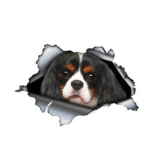 Creative car sticker 3d dog cavalier king animal decal window