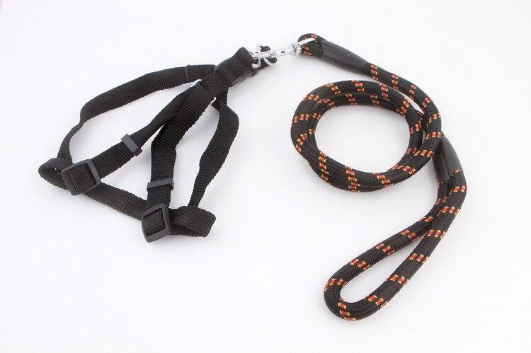 Dog Large Dog Neck Ring Lanyard Small Medium Chain Dogs Dog Traction Tai Ke Extendable Bear Dog Universal Pet