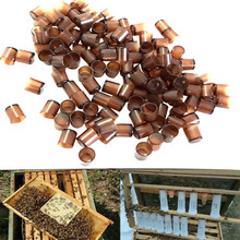 beekeeping tools protective cover base bee queen king cage accessories fertility king pedestal guard cage cover bee equipment 10 240 Pcs Brown Bee Feeding Tool Beekeeping Queen Cell Cup Beekeeper Cultivating Bee Queen Breeding Base Utensils Bee Cage #R5
