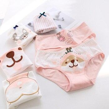 New Teenage Underpants Dog Printed Young Girl Briefs  Cartoon Panties Cotton Kids Underwear - discount item  50% OFF Children's Clothing