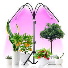 Grow-Lamp Led-Growing-Light Timing Plant 4-Spectrum for Tripod-Stand Adjustable