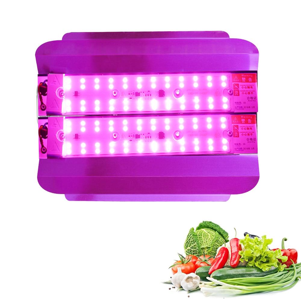 Outdoor LED Grow Light 100W Full Spectrum Plant Lights IP65 Waterproof COB Grow Tent Light Indoor Phytolamp Cultivation Lamps