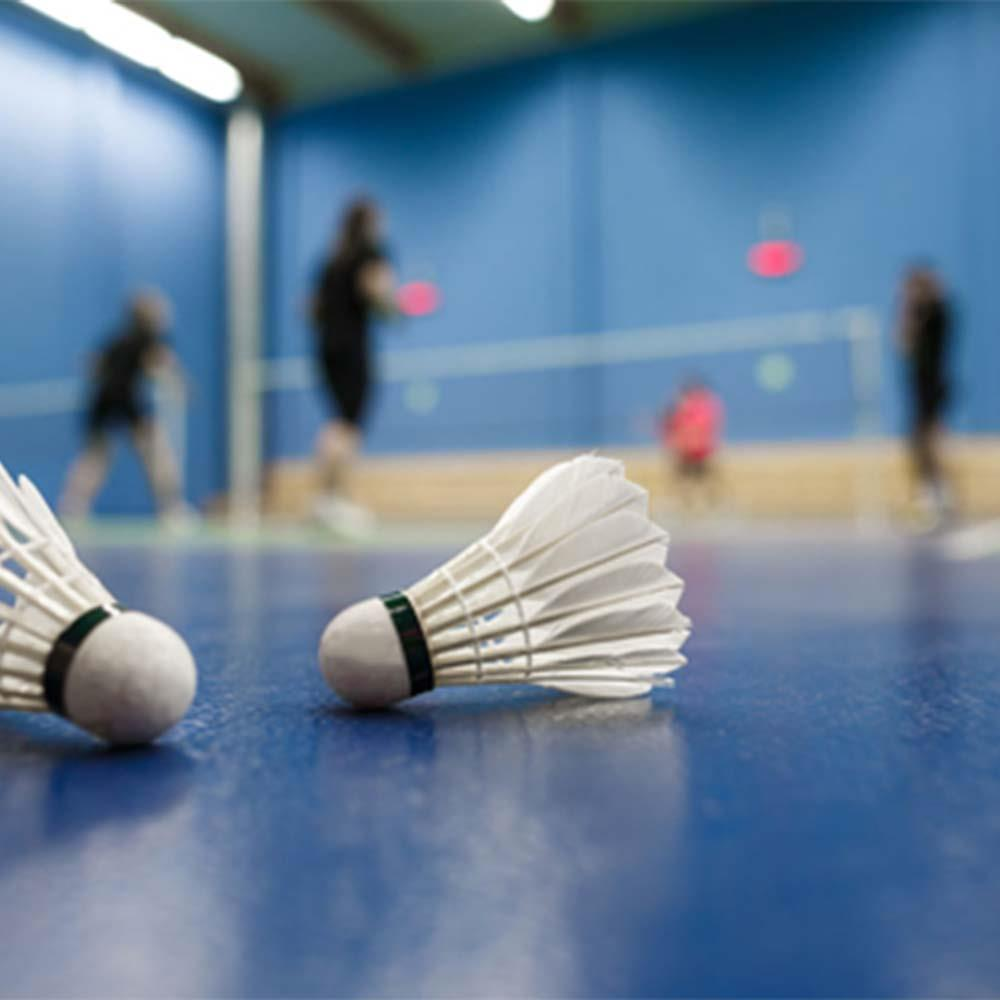 Durable Badminton Barrel Badminton Goose Feather Ball Fitness Outdoor Sports Accessoriess Indoor Shuttlecock Sporting Goods