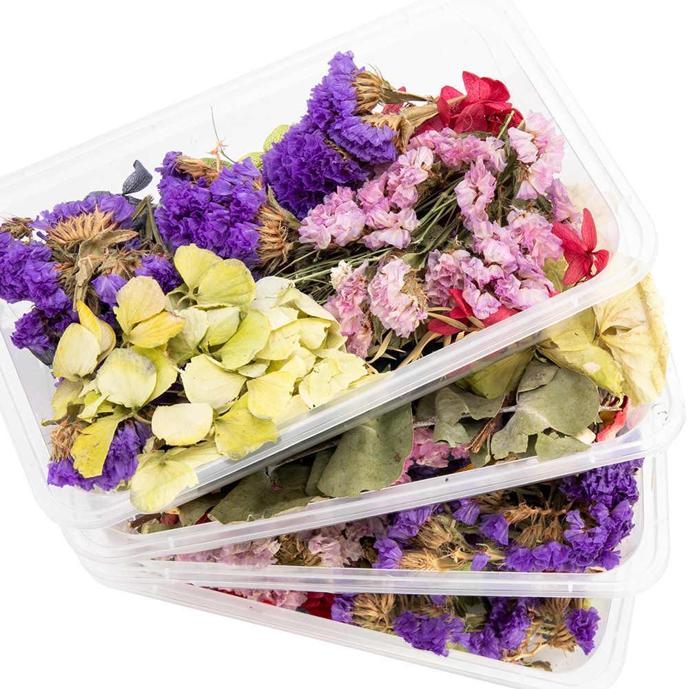 1 กล่องจริงแห้งดอกไม้สำหรับน้ำมันหอมระเหยเทียนเรซินอีพ็อกซี่จี้สร้อยคอเครื่องประดับทำหัตถกรรม DIY อุปกรณ์เสริม