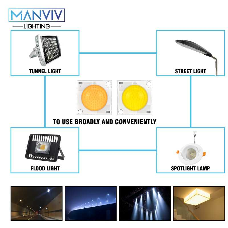 5Pcs LED Tongkol Chip 20W 30W 50W 220V Smart IC LED Manik-manik Lampu LED Bulb untuk Lampu Sorot Lampu Sorot DIY Lampu Lampu LED Chip