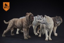 1/6 Scale Mr.Z Neapolitan Mastiff Dog Animal Statue Model Toy 4 Colors Action Figure Scence Accessory for Collection