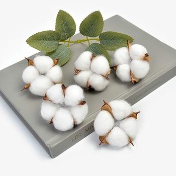 2/5/10 Pieces White cotton head 5cm natural kapok dried flower decor fo wedding home supplies DIY Artificial wreaths