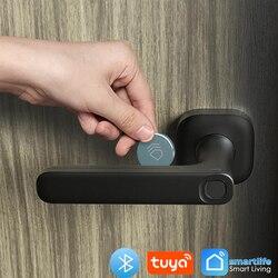 Yeeuu 2020 Nieuwe Fingeprint Deurslot Bluetooth Ondersteuning Tuya / Smartlife App Keyless Entry Gateway Voor Alexa / Google Assistent