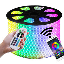 AC 220V outdoor LED Strip Light Bluetooth Remote Dimmable Controller IP65 Waterproof indoor rgb Lights 13M 15M 50M EU plug