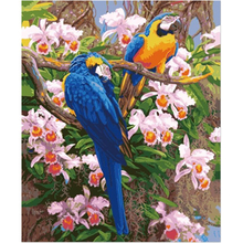 WONZOM Two Parrots Flower Paint By Numbers Kit Home Decor Oil Canvas Painting With Frame Wall Art Picture Acrylic 40X50CM