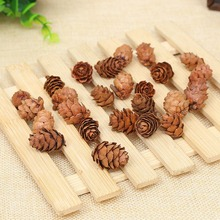 10 piezasmini conos decorativos Pinecone para árbol de Navidad florero cuenco relleno muestra artesanías decoración del hogar