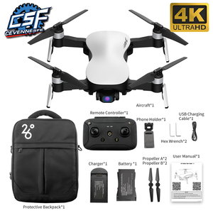 2020 X12 GPS Drone with WiFi FPV 4K HD Camera Brushless Motor Foldable Quadcopter Anti-shake 3 Axis Gimble drones Vs H117s SG906(China)