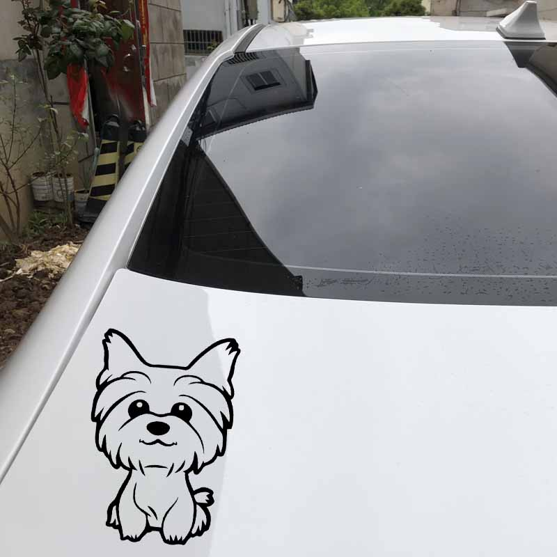 YORKSHIRE TERRIER OFFICIAL TAXI SERVICE  Dog Car Sticker  By Starprint