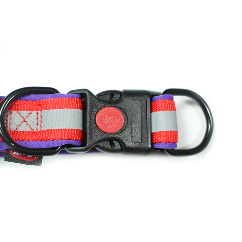 Dog Collar Personalized Nylon Pet Reflective Quick Adjustable Foam Sponge Material For Large Medium Small Dogs