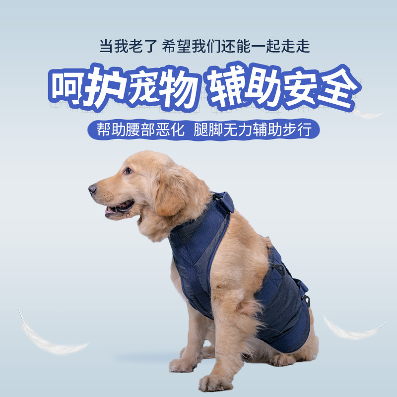 Pet Dog Traction Belt Gao Ling Quan Walk Hand-Assisted With Dog Medical Care Suspender Strap