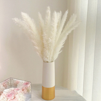 Bulrush Natural Dried Flowers Artificial Plants Branch Colorful INS Pampas Grass Phragmites Fake Flower Wedding Home Decoration