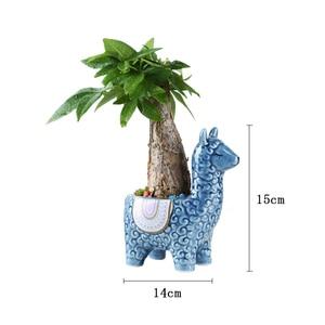 Image 2 - Cartoon Cute Alpaca Succulent Flower Pot Desktop Placed Potted Container Decoration Gift Balcony Plant Ceramic Creative