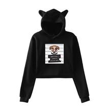 2019 New Harajuku Hoodies Girls Cute Bad Dog Cat Print Hooded Tops Womens Sweatshirt Long-sleeved Autumn Winter Clothing