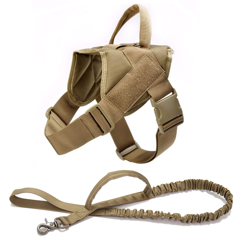 Brown Harness Leash