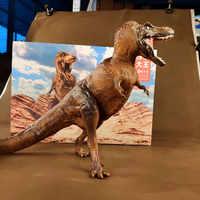 PNSO Tyrannosaurus Rex Große Skala Dinosaurier Modell Für Jungen spielzeug
