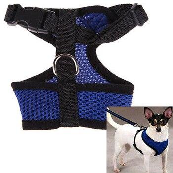 Dog Harness Collar 4