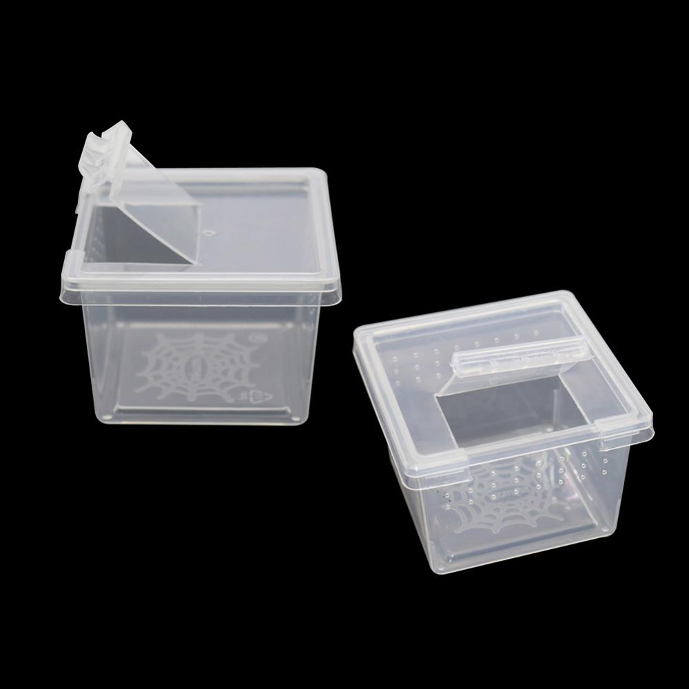 10 Pcs Larval Rearing Box Reptile Living Boxes Plastic Transparent Scorpion Spider Cultivate Container Insect Living Box