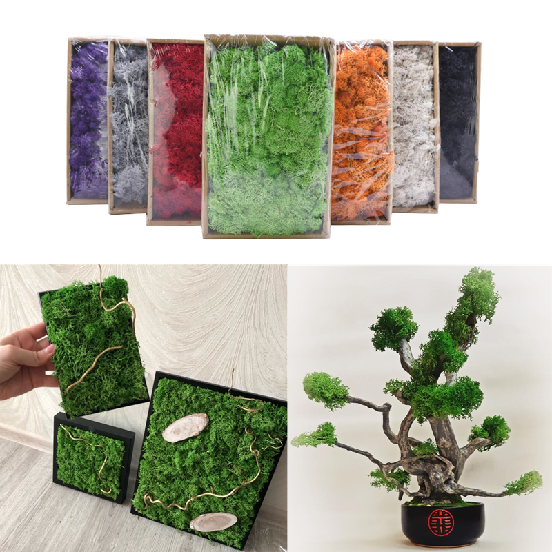 20/40g Natural High Quality Artificial Plant Moss DIY Home Wall Decor Garden Micro Landscape Material For Fake Flowers Ornament