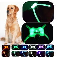 USB Charging Led Dog Collar Personalized Nylon Pet Tag Custom Puppy Cat Nameplate ID Collars Adjustable
