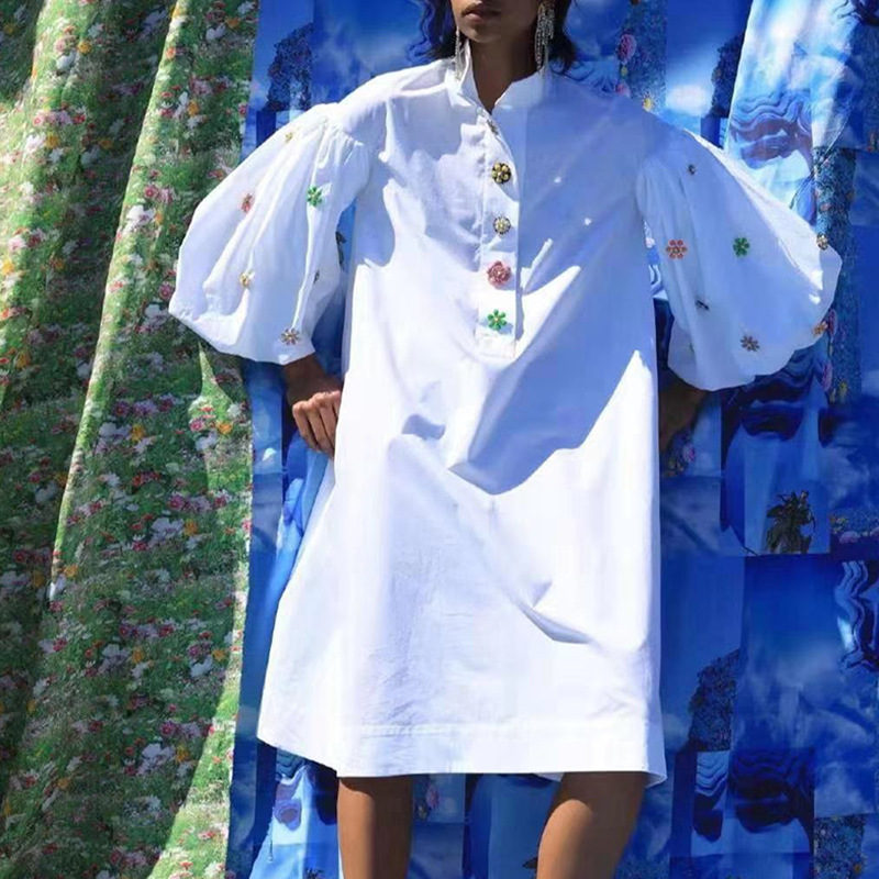 Australia Popular Brand Non-mainstream Design 2020 Spring New Style Loose-Fit Fold-down Collar Color Embroidered Shirt Dress