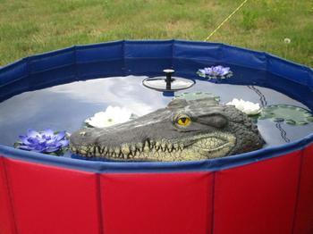 Cabeza de cocodrilo flotante, señuelo de jardín de agua, estanque, decoración artística para gansos, Predator, Control de pato, decoración de jardín, 4