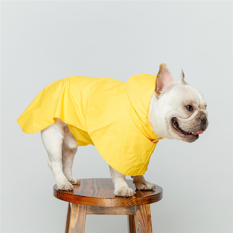 cães impermeáveis capa de chuva para animais