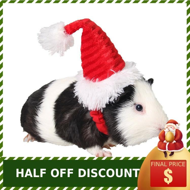 Купить мелкие товары для животных оптовая продажа ежик коврик pigpigman