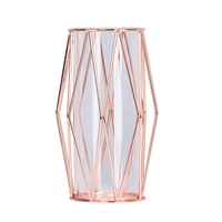 Nordic Style Wrought Iron Holder Vase Clear Glass Test Tube Hydroponic Container Flower Vase Flowerpot Glass Bottle Home Decor|Vases| |  -