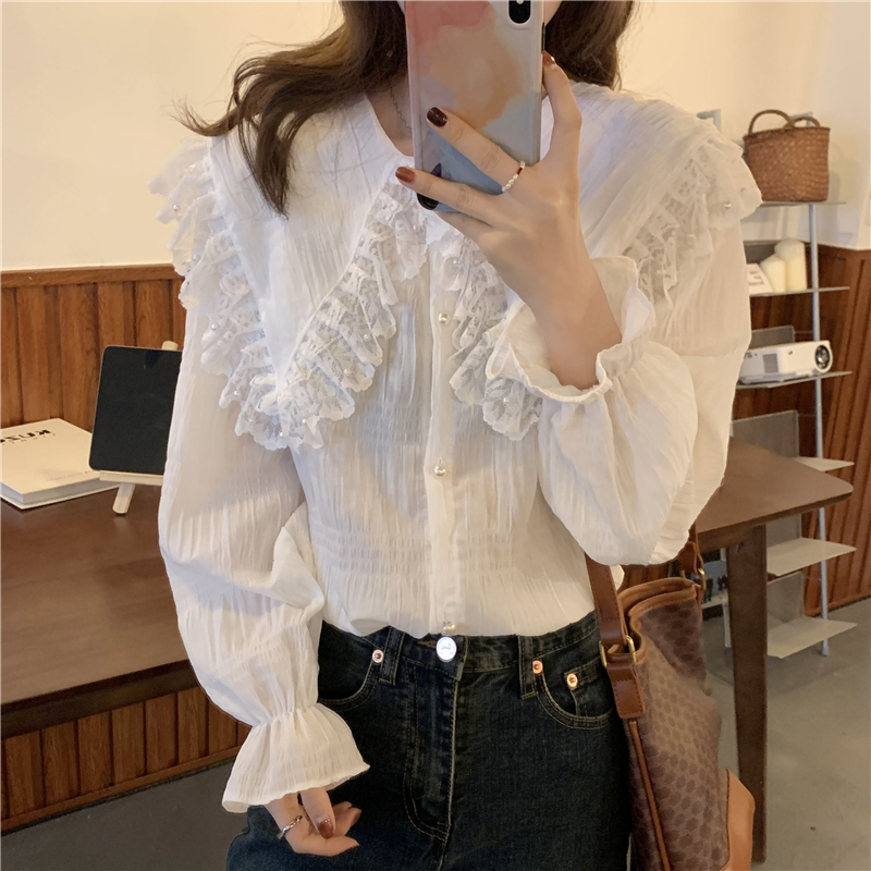 H5f7c6109d61042d3b335cb8820d48a756 - Spring / Autumn Butterfly Lace Collar Long Sleeves Loose Solid Blouse