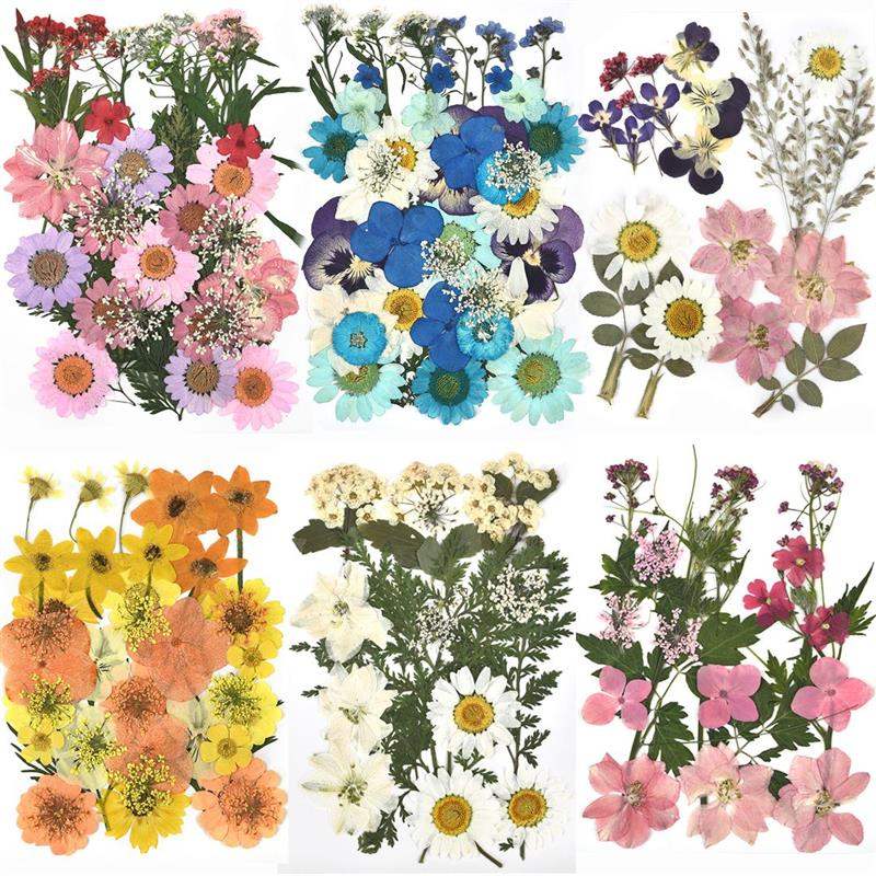 1 Pack Dried Flowers UV Resin Natural Flower Stickers Dry Beauty Decal For DIY Epoxy Resin Filling Jewelry Decoration 2021 New