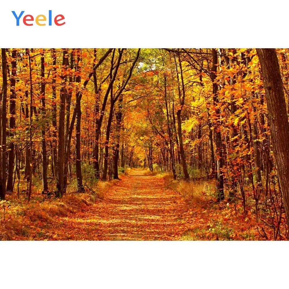 Фотофон для фотосъемки с осенними лесными листьями, природными пейзажами, свадебным детским портретом, виниловые реквизиты для фотосъемки