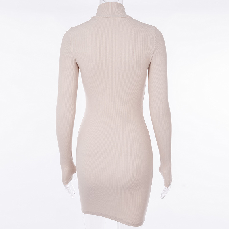 Cryptographic Ribbed turtleneck long sleeve winter dress women 19 fashion vestidos trend color slim sexy bodycon dresses 10
