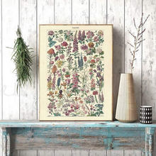 Impresión de flores Vintage pósters florales antiguos e impresiones imágenes para la pared granja botánica pared arte lienzo pintura hogar arte Decoración