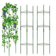 Скалолазание лоза стойку растение горшечная Опора с пластиковым